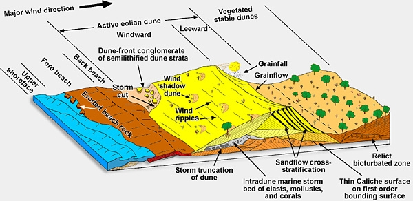 Exploration Production Geology View Image Carbonate Eolian